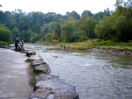 Fisherman on the Credit River